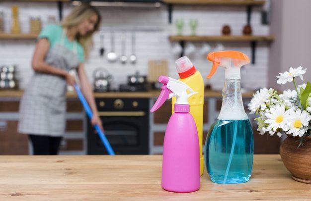 Formalização da empregada doméstica – Por onde começar?